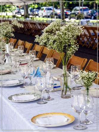 Dining Chairs for Rustic weddings, partiers and social gatherings in Wisconsin